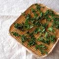 セロリを買ったら乾燥セロリの葉。