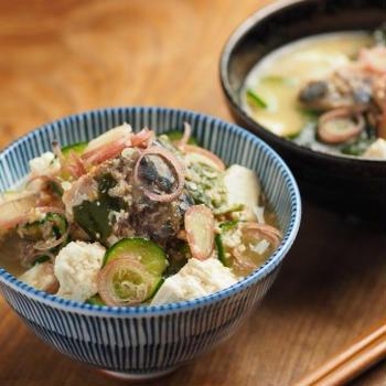 サバ缶冷や汁、サバ水煮缶詰を使った料理