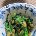 「春菊の納豆和え」