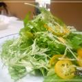 風邪予防【Recipe:金柑とキャベツと水菜のサラダ】