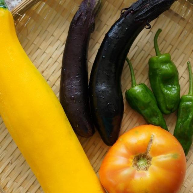 干し夏野菜の素揚げとチキンのから揚げ 長ネギソースがけ