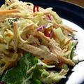 最近のみかん亭のプルドポークと、カラマンシードレッシングのサラダ。