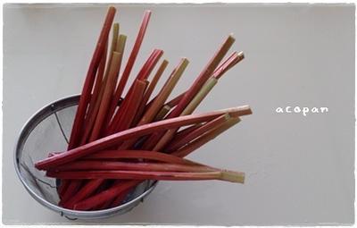 夏の収穫・まっ赤なルバーブ