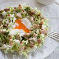 【白菜レシピ】クリスマスにオススメ◎「白菜のリースサラダ」