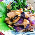 茄子の胡桃味噌和え(動画レシピ)/Eggplant with walnut miso dressing.