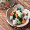 北海道玄米糀 で キューブ野菜の簡単浅漬け♪