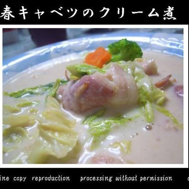 春キャベツのクリーム煮~やさしくクリーミィ~☆