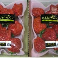 西武渋谷店食品館 高級苺 ロイヤルクイーン♪
