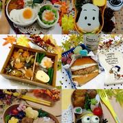 今週のお弁当のまとめ6選(11/14~18)