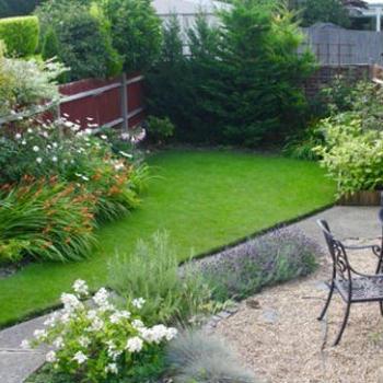 my garden so far