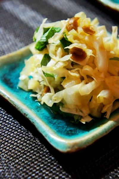 手作り黒豆おからの炒り煮、キャベツの梅肉大葉和え、ねぎま柳川風を日本酒を……