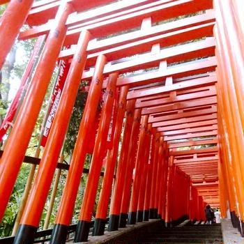 日枝神社と豊川稲荷東京別院。