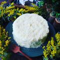 3月8日はミモザの日❤️ふわふわしゅわ~ん♪ミモザケーキ風レアチーズムースケーキ❤️