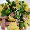 カイワレと炒り卵のサラダ<麺つゆドレッシング>