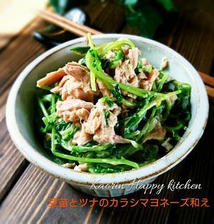 副菜 常備菜3分で❤豆苗とツナのからしマヨネーズ和え