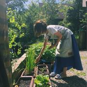 撮影終盤! まずは野菜の収穫をしてから料理 ハンモック