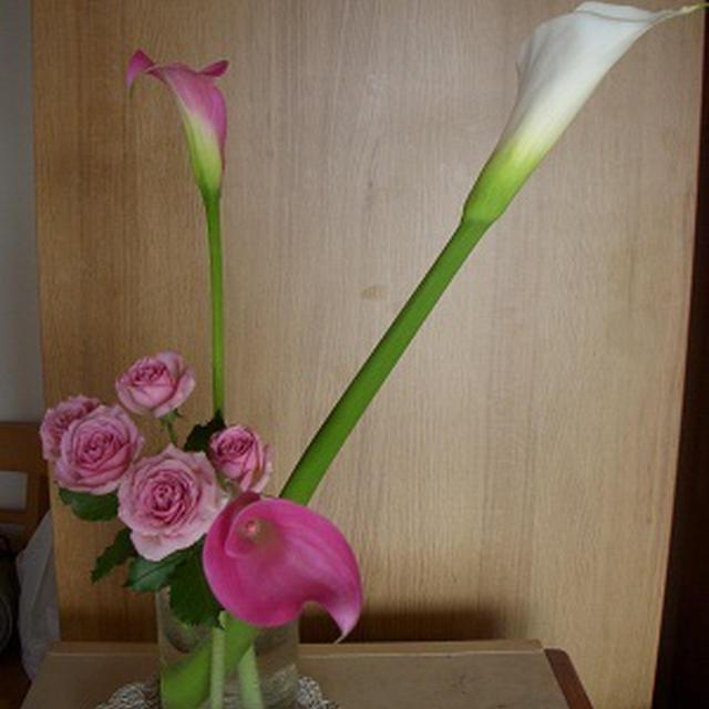 今月の花。