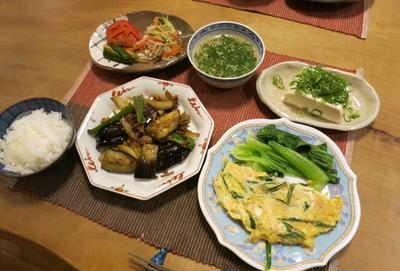 茄子とひき肉の味噌炒め~中華メニューを和風に~ と 皇帝ダリアの花♪
