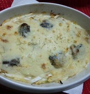 ヨーグルト入り~ベシャメルソースで作る~~鯖と白菜グラタン (キッチン ラボ)