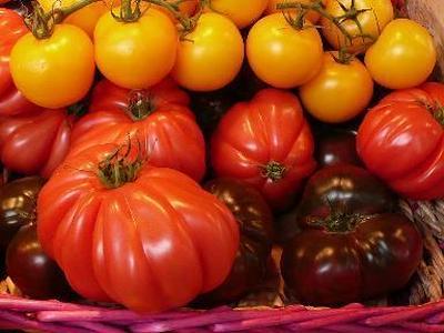*VFB交流会・高知県産トマトを使ったメニュー確定♪*