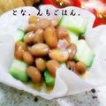 かりかりチーズin餃子の皮カップ納豆サラダ by とな。さん