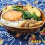 筍のツナ煮と焼き鮭弁当
