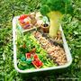 Miniature Garden Bento & Singapore Garden Festival 2014