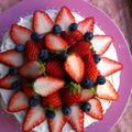 イチゴのショートケーキ☆いちごとブルーベリーでデコレーション♪ by manaママさん