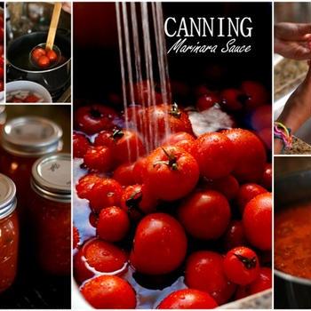 canning(marinara sauce)