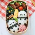 祝・赤ちゃんパンダ誕生のお弁当*キャラ弁[簡単作り方]