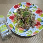 豚肉と長ねぎのレモンペパーミックス炒め