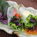 365日野菜レシピNo.185「ハンダマの生春巻き」