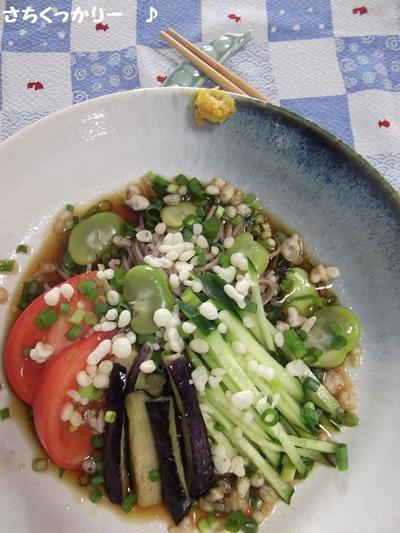 冷し空豆たぬき蕎麦