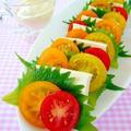 暑い夏に食べたい紅白コンビ☆「トマト×豆腐」簡単レシピ5選 by みぃさん