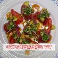 #098 鰹のカルパッチョ 夏薬味を添えて「茗荷・大葉・生姜・青葱の組み合わせがサイコー!」