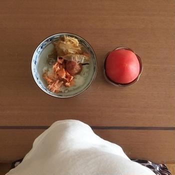 お茶漬け(鮭と梅)