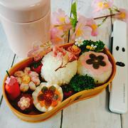 真ん丸おにぎり♡桜いっぱいの春弁当