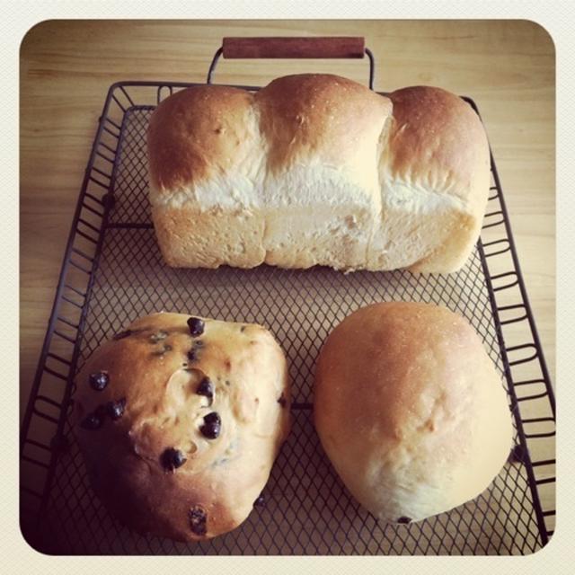 てごねパン@ミニ食パン