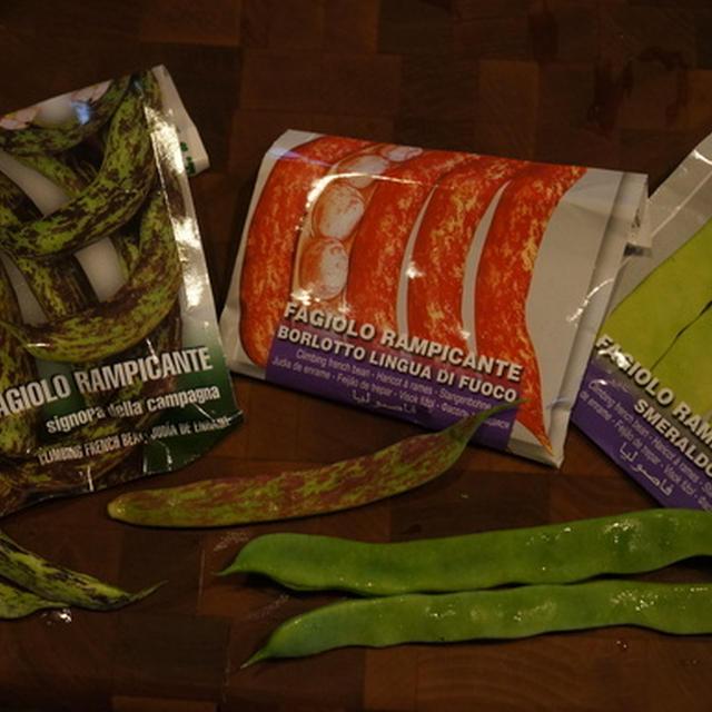 カラフルイタリアンインゲン豆の素揚げ & カリカリきゅうり