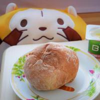 「Afternoon Tea」~素朴なパンとラスカルに気持ちを宥められる朝~