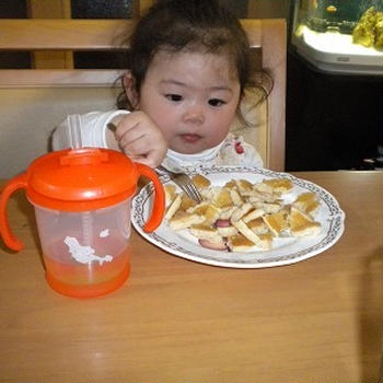 我が家の Little Angel