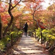 京都 宝筐院の紅葉♪