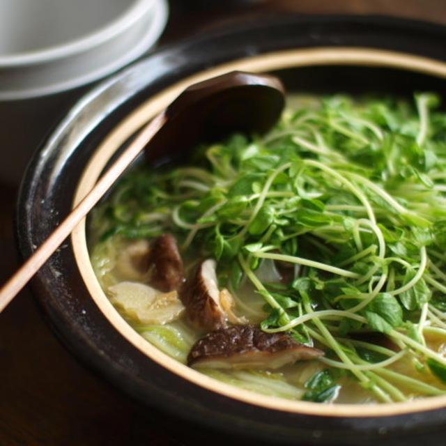 白菜と豆苗の土鍋煮込。