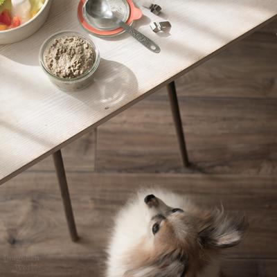 ■冷凍作り置きOK!鶏レバーと卵のペースト(手作り犬おやつ&ドッグフードトッピングレシピ)