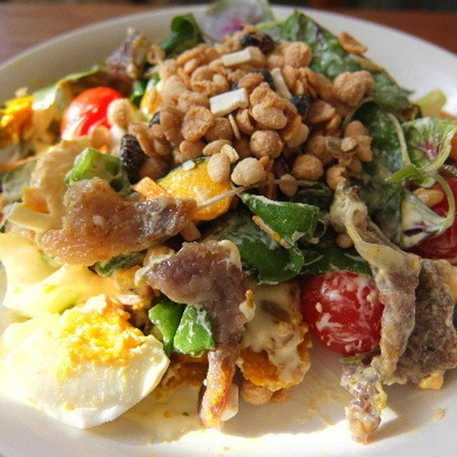 イベリコ豚のどんぐりころころ、イベリコ豚と彩り野菜のシリアルサラダ