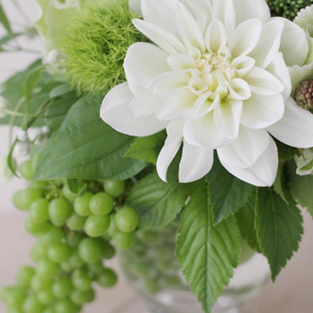 NAZCA Flower