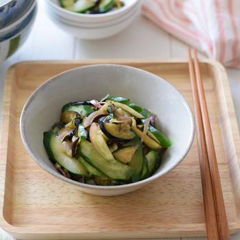 【和風おもてなし】夏野菜の香味浅漬け(きゅうり・なす・大葉・みょうが・しょうが)ポリ袋で超簡単!