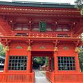 穴八幡宮にお参り★2021