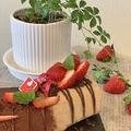 気の早い公民館レッスン試作品バレンタイン用ココアロールケーキ試作品を焼きました ♪♪
