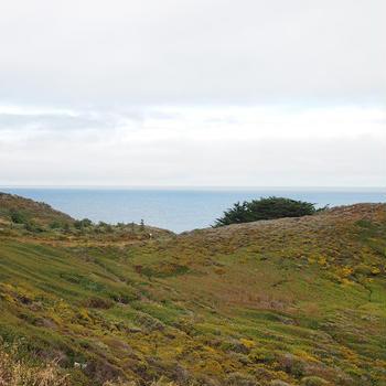 北カリフォルニア旅行 15日目 Carmel ・ Monterey